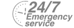 24/7 Emergency Service Pest Control in West Kensington, W14. Call Now! 020 8166 9746